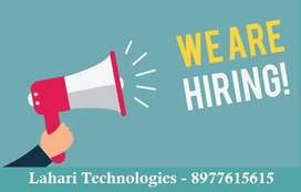 Data entry jobs in LahariTechnologies