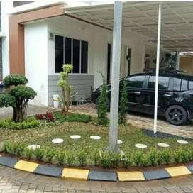 Tukang taman rumah-tukang taman minimalis-ready stok