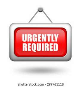 Urgent requirement for office work only for 10+2 and B.A B.sc student