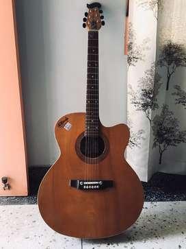Signat guitar with cover