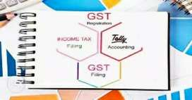 GST return filing, Income Tax filing, tally accounting,audit