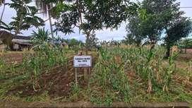 Dijual tanah di lokasi strategis banjarbaru