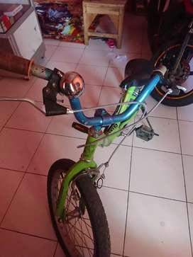 Sepeda anak usia 8-13 thn