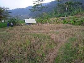Tanah Sawah Dekat Objek Wisata Taman Batu Dijual Murah di Purwakarta