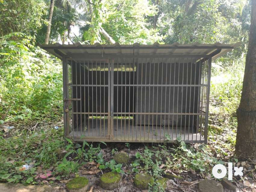 Strong Dog cage with dog room inside 0
