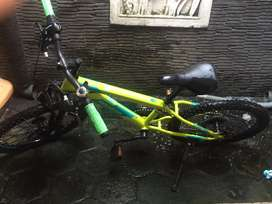 Sepeda Polygon Monarch 20 Green