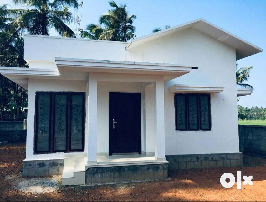 A NEW 2BHK 750SQ FT 4CENTS HOUSE IN KUTTANELLUR,THRISSUR 0