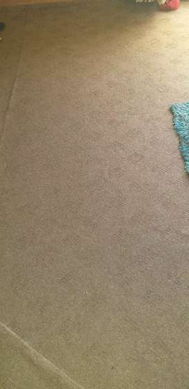 2 carpets two months used only