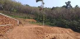 Plain land good for villa project