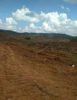 Tanah kosong#Agus# 500 Ha, lipat kain