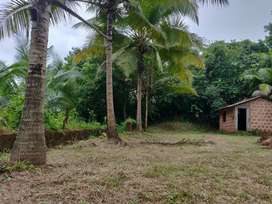 410sqm Settlement plot for sale at Curtorim near Lake