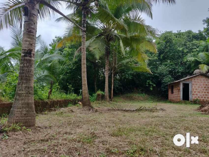 410sqm Settlement plot for sale at Curtorim near Lake 0