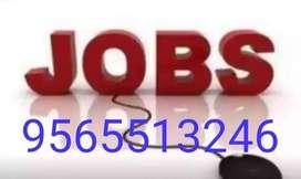 Pvt Ltd Urgent 160 MF Fresher Candidate Interview going on