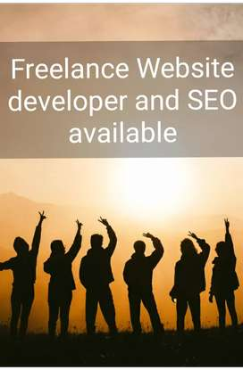 Hire Us for Website developer and SEO and get free audit for your site