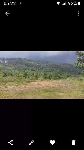 Tanah kebun dikerjasamakan untuk pertanian perkebunan atau peternakan