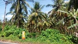 Dijual tanah luas Belakang bandara,pnggr jl patokaan Lt 22 ha