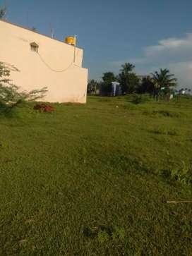 sale of land at pammadukulam.