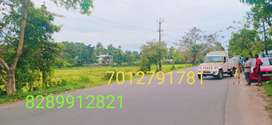 Kothamangalam, kozhipilli