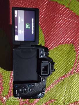 Canon 77 d with 18-55 mm kit lens..