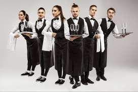 We Provide Cook Waiter Steward Captain Manager Helper call 973O168O46
