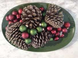 Pine Cones for Sale