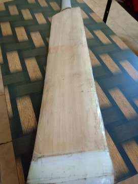 Customized A grade English willow bat