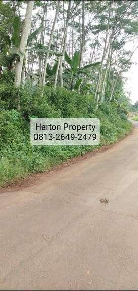 Jual Tanah Mijen di Semarang SHM, LT: 4289 m2