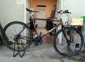 sepeda vintage/commuter bike