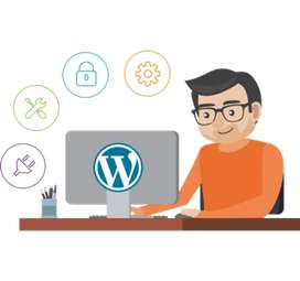Im a Wordpress Developer