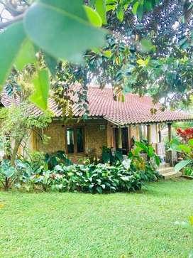 Villa Rumah Bambu Halaman Luas Asri SHM Akses Mobil