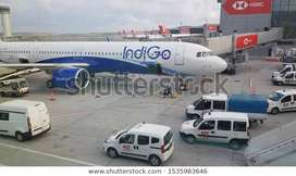 Hir1ing in air India airlines for full time job opening in ground staf