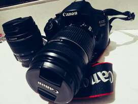 Canon cameras available for rent
