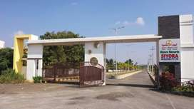 Approved and Well Developed Farm lands for sale at BIBI nagar Ample