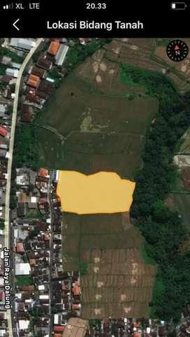 Jual Tanah 65.5Are Harga 260Jt/Are di Dalung Kuta Utara