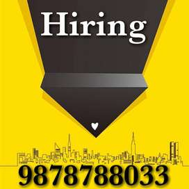 Data entry/Back office staff required in Tricity Chandigarh
