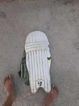 Cricket  originol sg pads for both legs