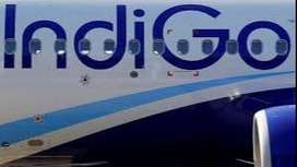 Indigo is hiring candidate for airport job