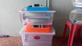 Automatic fiber model egg incubator (Yesem) Nellore