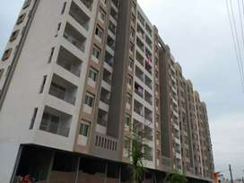 New 3 bhk flat for rent