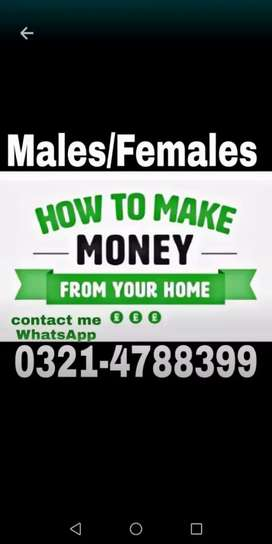 Urgent Online base working for Males & Females required.