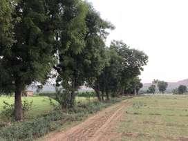 just 7km. north delhi border