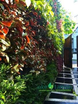 Tukang buat vertical garden gratis penyiraman otomatis