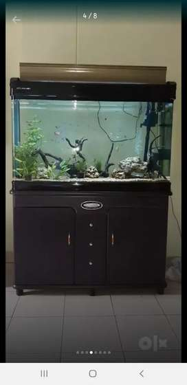 Moulded Aquarium. SERIOUS BUYERS ONLY, RATE CAN BE BIT NEGOTIABLE.