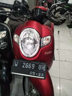 Ready scoopy bagus
