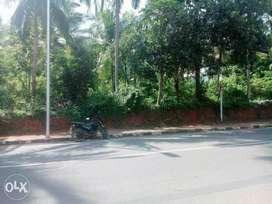 Prime Land for Sale near KOVALAM beach
