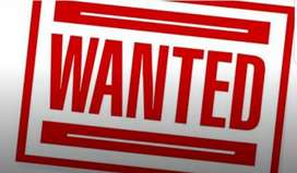Wanted for marketing &sales