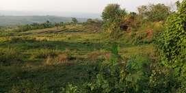 Tanah Pemandangan Bagus DIjual Murah di Wanayasa Kiarapedes Purwakarta