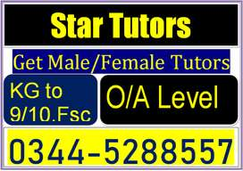 Tutors Available in Twin Cities.We Have Specialized Tutors(all Grades)