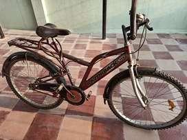 Razorback bicycle for sale