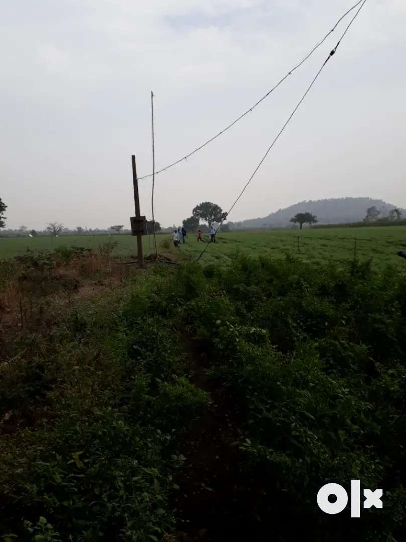 Agriculture Land 5.51 Acre for Sale 0